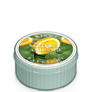 Kringle Candle American Heritage Citrus and Sage Daylight