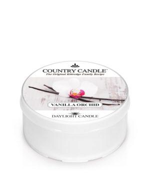 Vanilla Orchid-dlcc